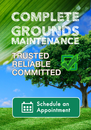 schedule your lawn and landscape contractor