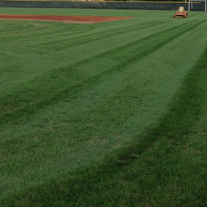 louisville ky sports field turf management