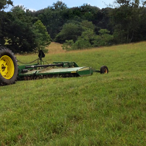 tractor work field and brush cutting