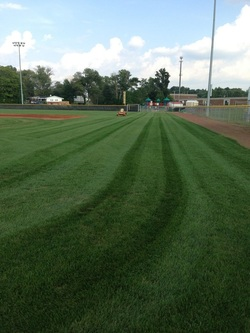 sports field turf maintenance